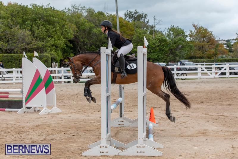 RES-Hunter-Jumper-Show-Bermuda-March-17-2019-1483