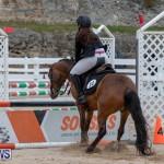 RES Hunter Jumper Show Bermuda, March 17 2019-1489