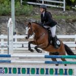 RES Hunter Jumper Show Bermuda, March 17 2019-1512