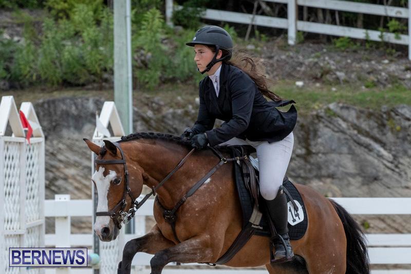 RES-Hunter-Jumper-Show-Bermuda-March-17-2019-1513