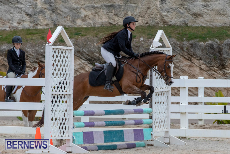RES-Hunter-Jumper-Show-Bermuda-March-17-2019-1523