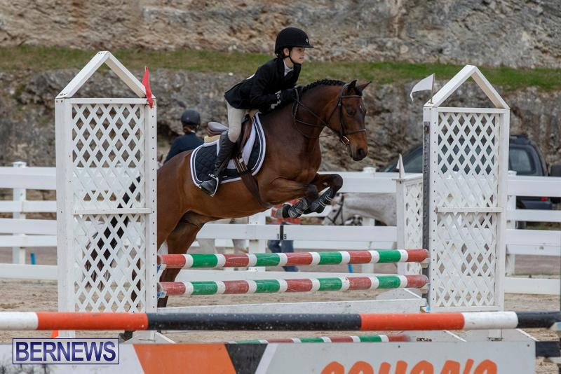 RES-Hunter-Jumper-Show-Bermuda-March-17-2019-1576