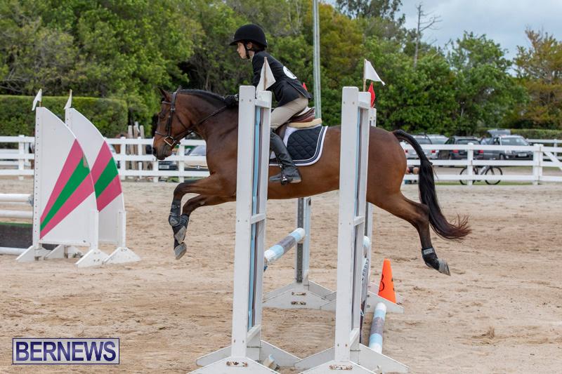 RES-Hunter-Jumper-Show-Bermuda-March-17-2019-1599