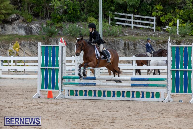 RES-Hunter-Jumper-Show-Bermuda-March-17-2019-1627