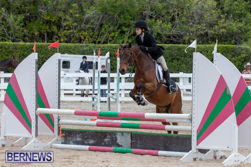 RES-Hunter-Jumper-Show-Bermuda-March-17-2019-1646