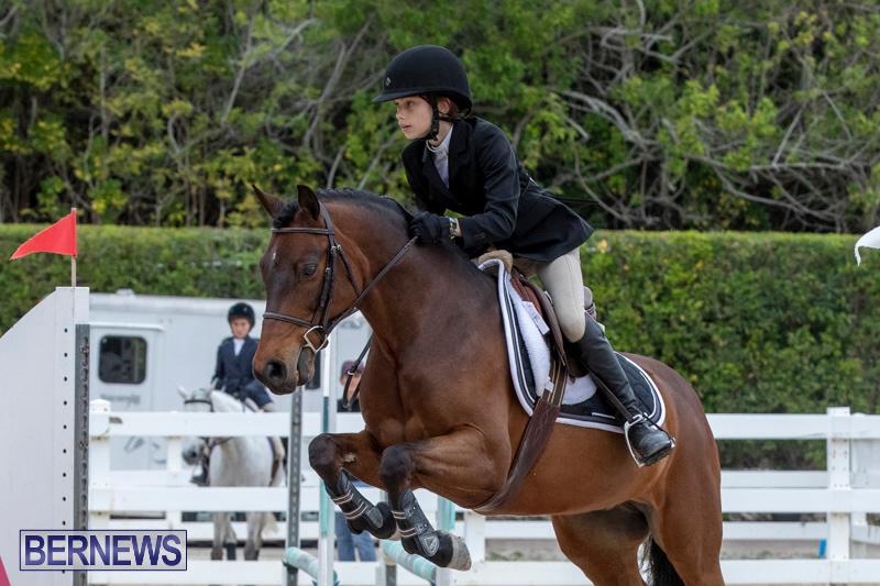RES-Hunter-Jumper-Show-Bermuda-March-17-2019-1647
