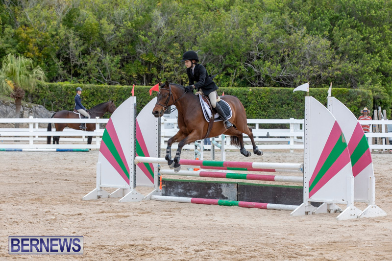 RES-Hunter-Jumper-Show-Bermuda-March-17-2019-1648