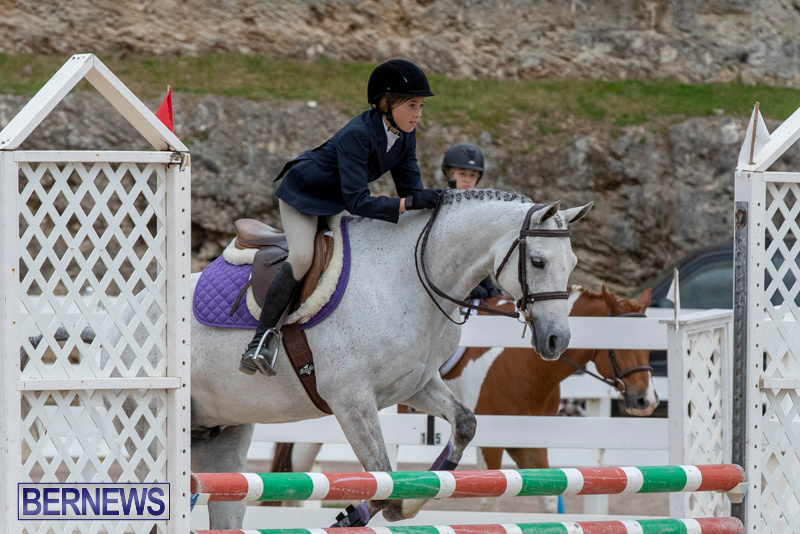 RES-Hunter-Jumper-Show-Bermuda-March-17-2019-1669