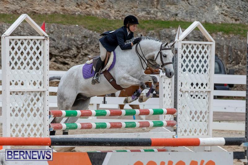 RES-Hunter-Jumper-Show-Bermuda-March-17-2019-1670