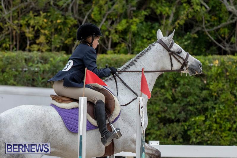 RES-Hunter-Jumper-Show-Bermuda-March-17-2019-1675