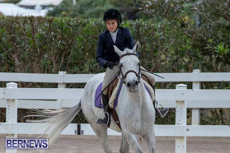 RES-Hunter-Jumper-Show-Bermuda-March-17-2019-1683