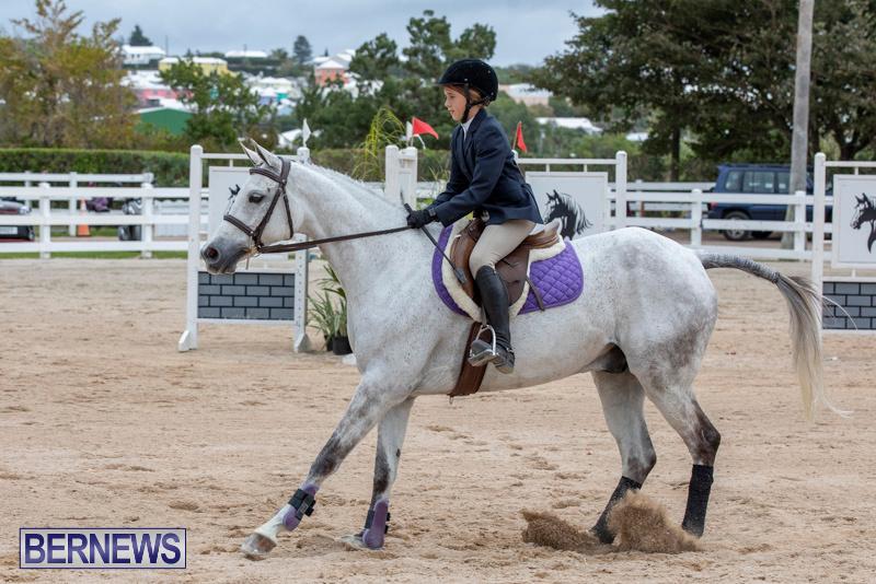 RES-Hunter-Jumper-Show-Bermuda-March-17-2019-1685