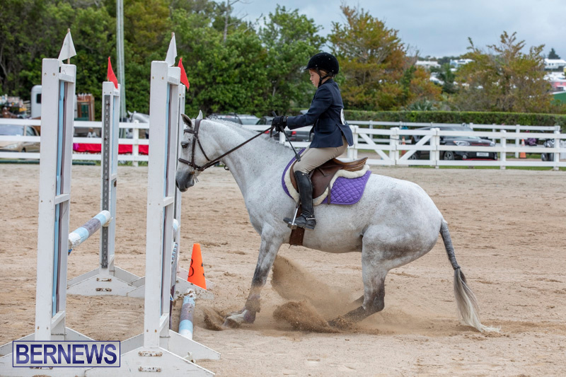 RES-Hunter-Jumper-Show-Bermuda-March-17-2019-1689