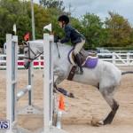RES Hunter Jumper Show Bermuda, March 17 2019-1697