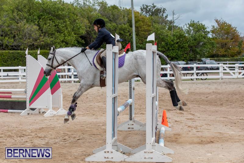 RES-Hunter-Jumper-Show-Bermuda-March-17-2019-1699