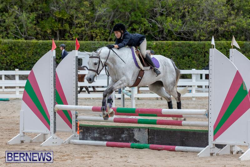 RES-Hunter-Jumper-Show-Bermuda-March-17-2019-1757