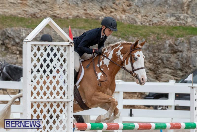 RES-Hunter-Jumper-Show-Bermuda-March-17-2019-1776