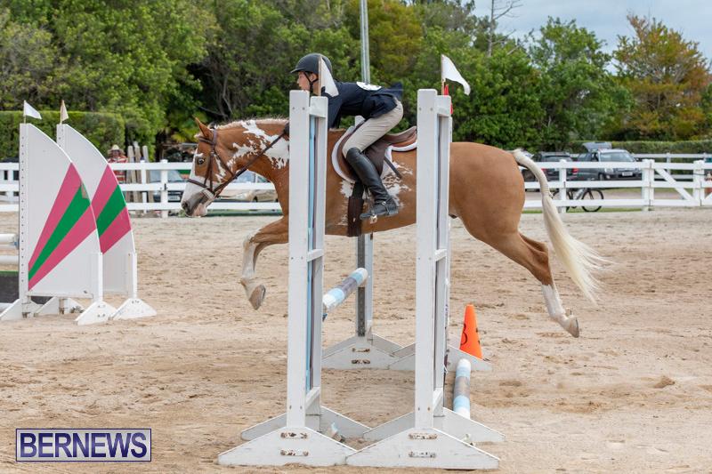 RES-Hunter-Jumper-Show-Bermuda-March-17-2019-1788