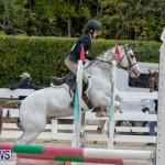 RES Hunter Jumper Show Bermuda, March 17 2019-1828