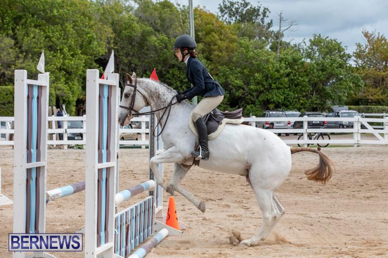 RES-Hunter-Jumper-Show-Bermuda-March-17-2019-1831