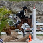 RES Hunter Jumper Show Bermuda, March 17 2019-1924