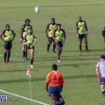 Rugby Americas North Test Match Bermuda vs Jamaica, March 9 2019-0818