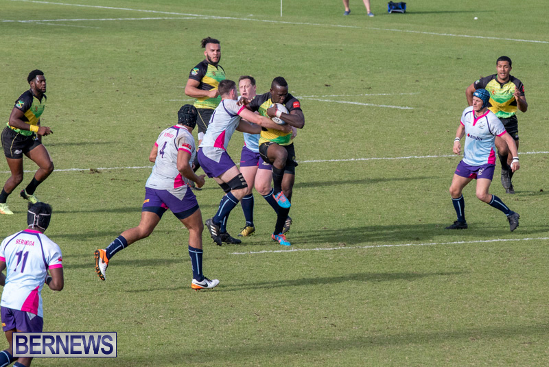 Rugby-Americas-North-Test-Match-Bermuda-vs-Jamaica-March-9-2019-0842