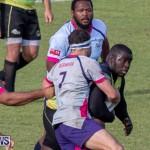 Rugby Americas North Test Match Bermuda vs Jamaica, March 9 2019-0971