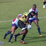 Rugby Americas North Test Match Bermuda vs Jamaica, March 9 2019-0990