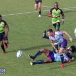 Rugby Americas North Test Match Bermuda vs Jamaica, March 9 2019-0996