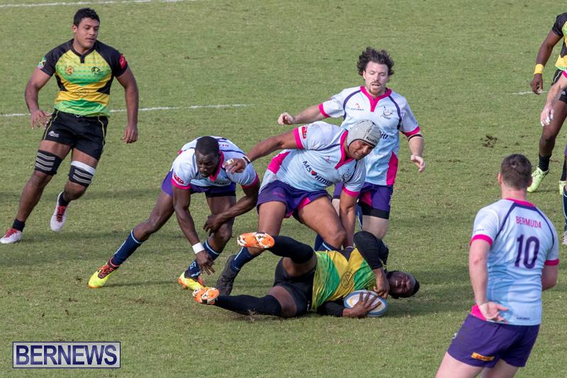 Rugby-Americas-North-Test-Match-Bermuda-vs-Jamaica-March-9-2019-1048