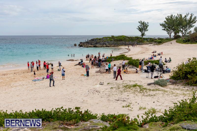 The-Great-Bermuda-Penguin-Swim-March-3-2019-1749