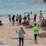 The Great Bermuda Penguin Swim, March 3 2019-1818