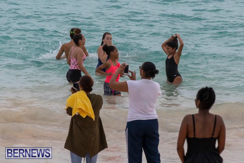 The-Great-Bermuda-Penguin-Swim-March-3-2019-1824