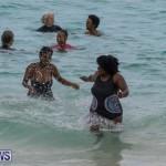 The Great Bermuda Penguin Swim, March 3 2019-1839