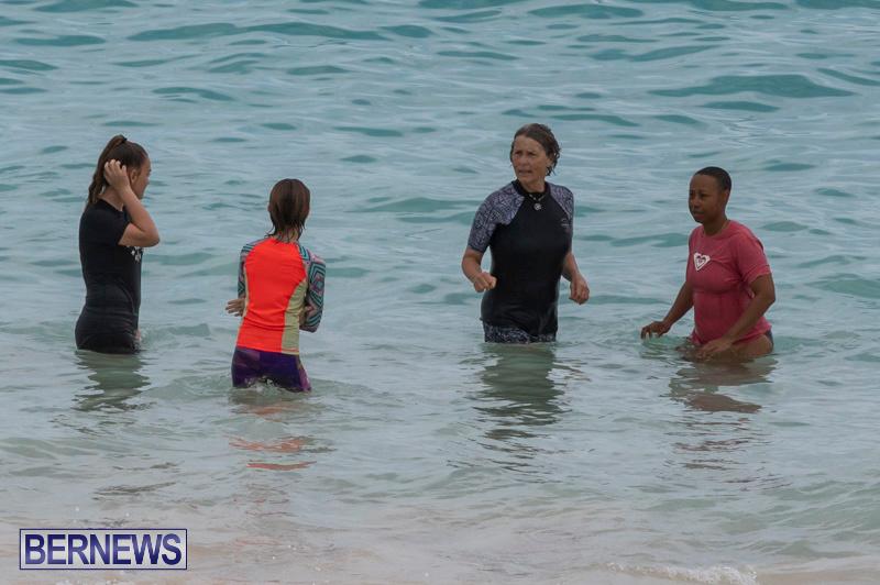 The-Great-Bermuda-Penguin-Swim-March-3-2019-1873