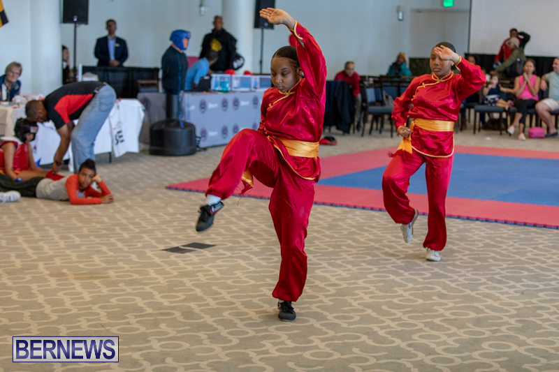 Women-in-Sports-Expo-Bermuda-March-9-2019-0481