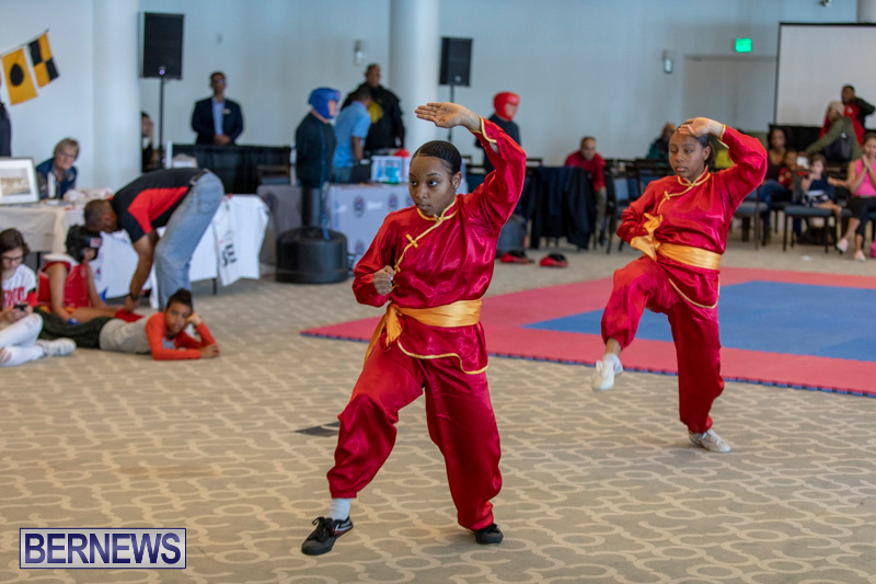 Women-in-Sports-Expo-Bermuda-March-9-2019-0482