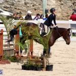 equestrian Bermuda Mar 27 2019 (1)