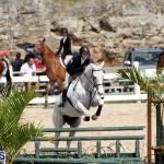equestrian Bermuda Mar 27 2019 (10)