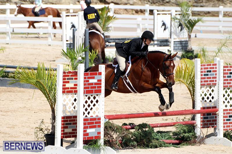 equestrian-Bermuda-Mar-27-2019-11