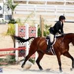 equestrian Bermuda Mar 27 2019 (12)