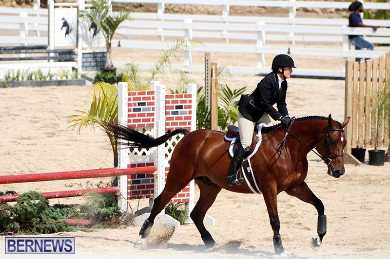 equestrian-Bermuda-Mar-27-2019-12