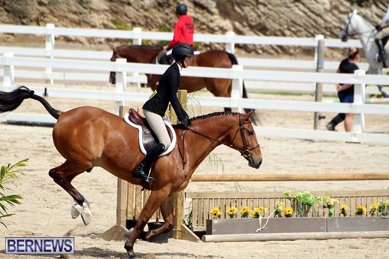 equestrian-Bermuda-Mar-27-2019-13