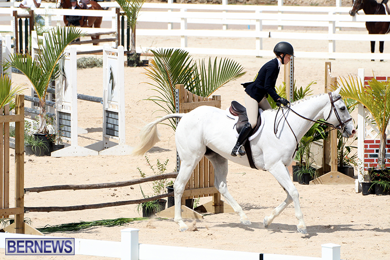 equestrian-Bermuda-Mar-27-2019-18