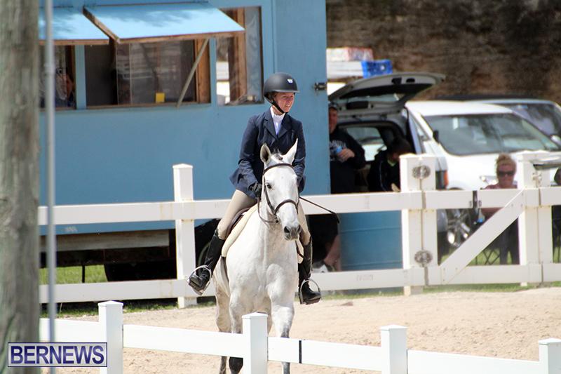 equestrian-Bermuda-Mar-27-2019-19