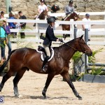 equestrian Bermuda Mar 27 2019 (2)
