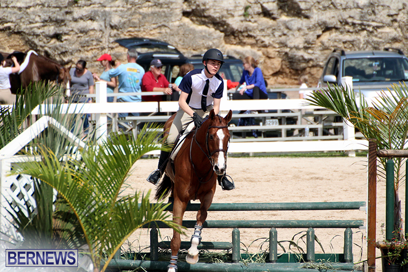 equestrian-Bermuda-Mar-27-2019-4