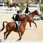 equestrian Bermuda Mar 27 2019 (5)