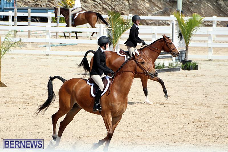 equestrian-Bermuda-Mar-27-2019-5
